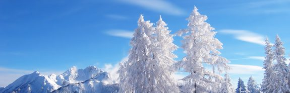 Gaz : pas de pénurie cet hiver
